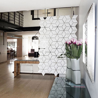 Modern Divider for Living Room That Will Amaze You