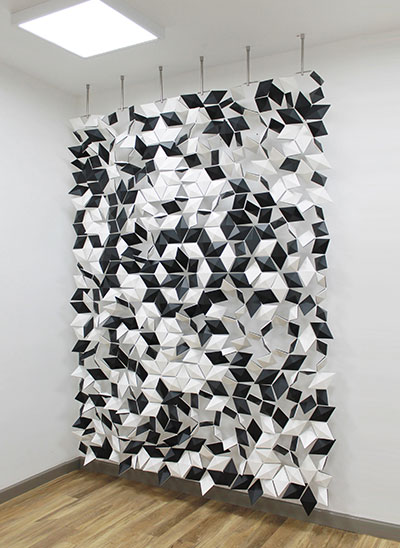 Bloomming Black And White Room Divider